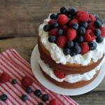 Torta sa šumskim voćem i jogurtom